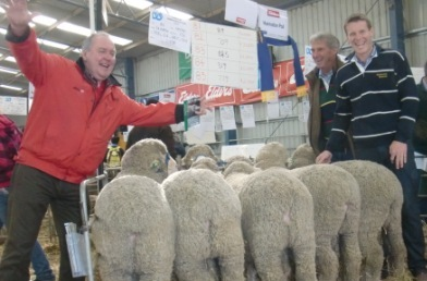 Excitement over the Hannaton Sale Team